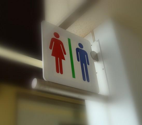新生活応援!新しく暮らすにはまず小さいトイレから改造『リフォーム』してみよう!