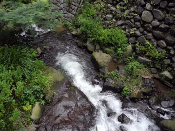 福井は海だけだと思っていない?一乗滝もひっていい感じだよ!