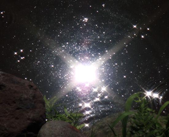 宇宙でも水中でも文字が書ける『SPACE PEN/スペースペン』を入手したぞ!