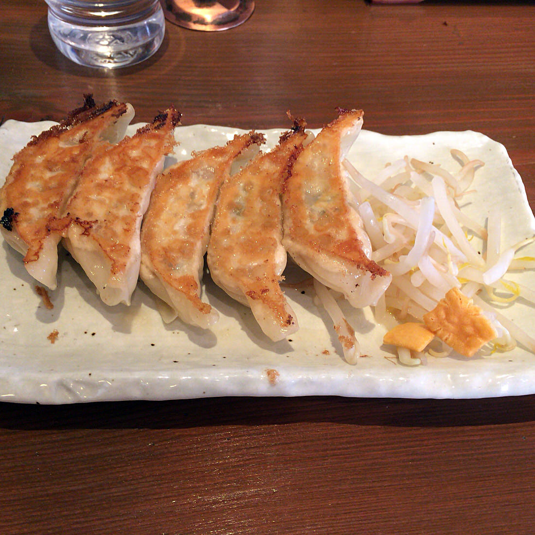hamamatsu-gyoza-tizugyoza