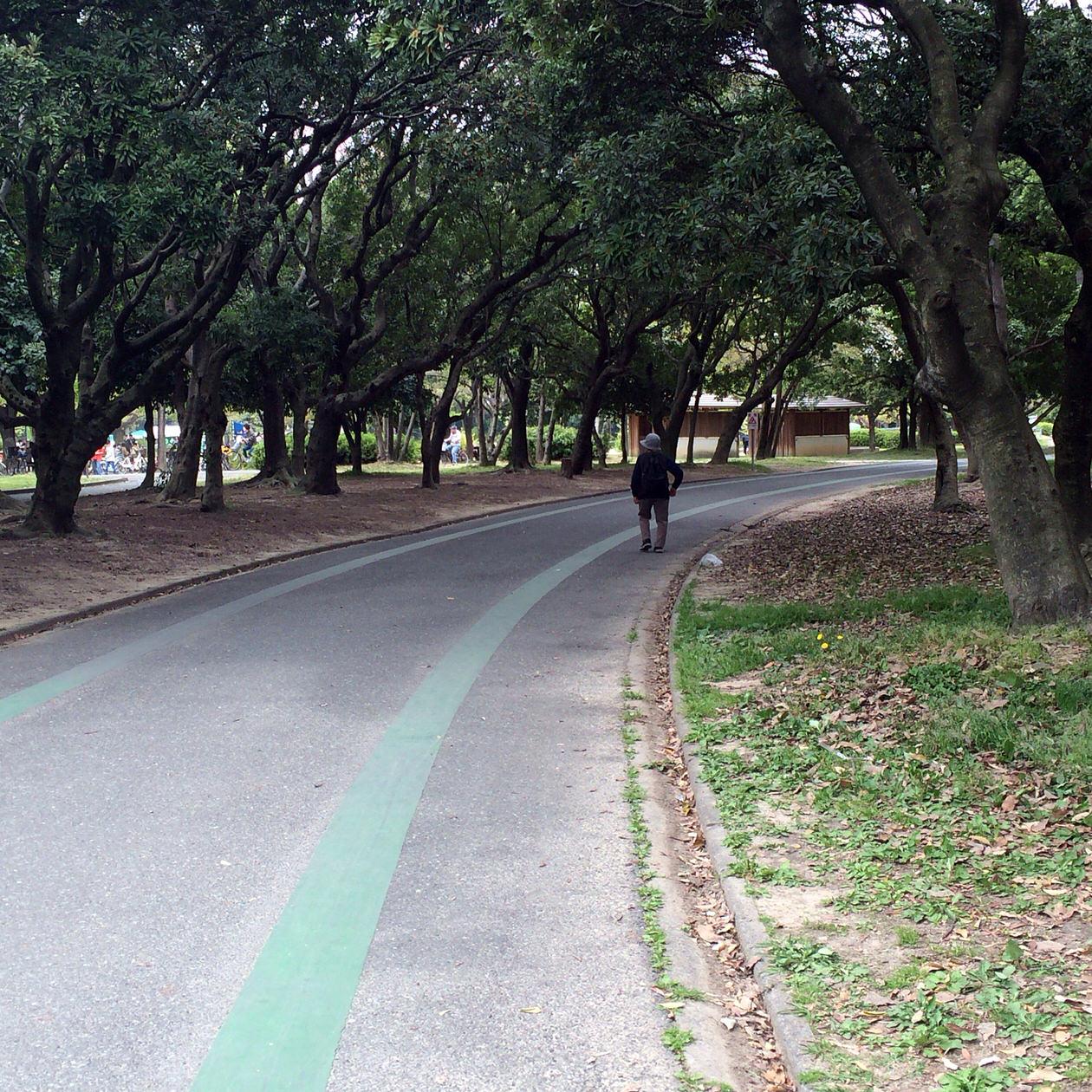 サイクリングコース-緑ライン
