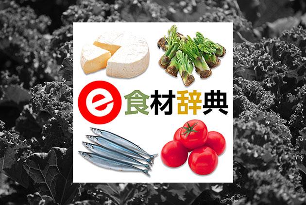 旬の野菜がすぐに分かるアプリ『e食材辞典 for iPhone』で美味しい食材を知ろう!