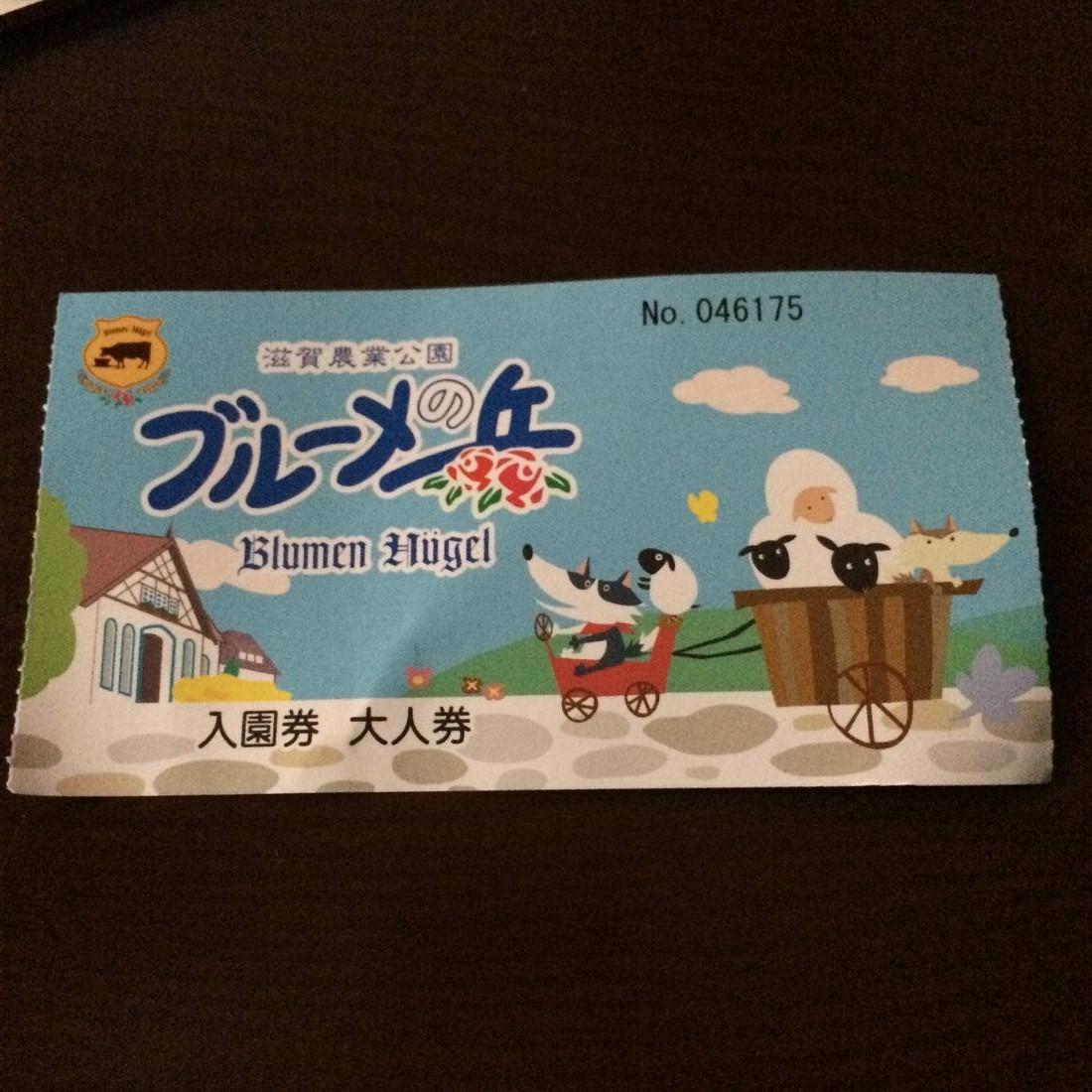 ひまわり畑を見に滋賀県のブルーメの丘に行ってきた!