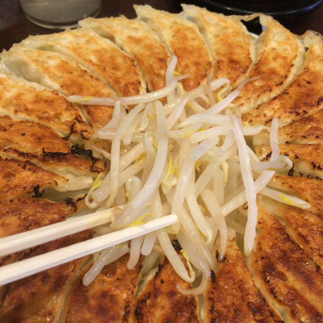 浜松餃子-アップ-もやし