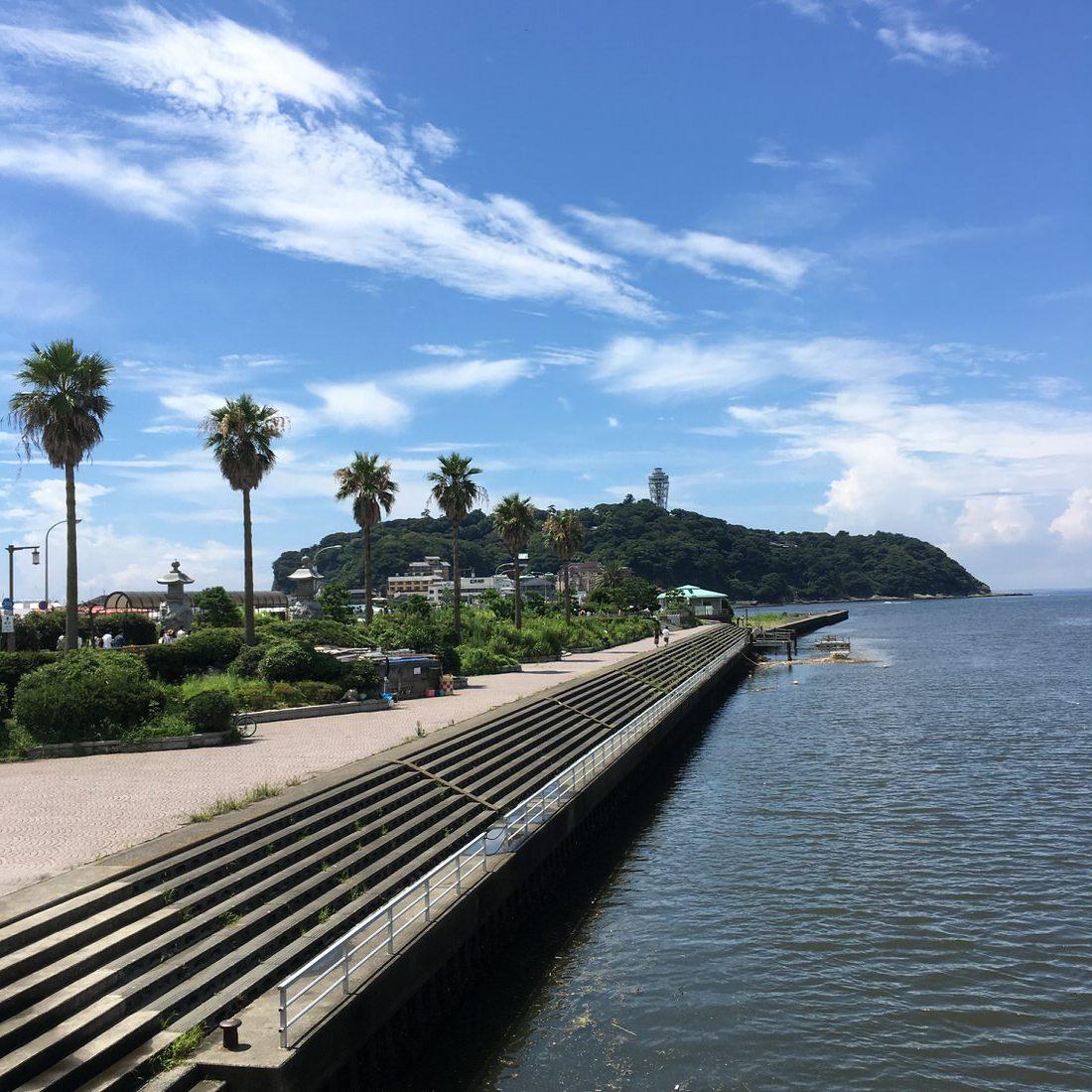 新江ノ島水族館でイルカショーをカメロンパンを食べながら楽しんできた!